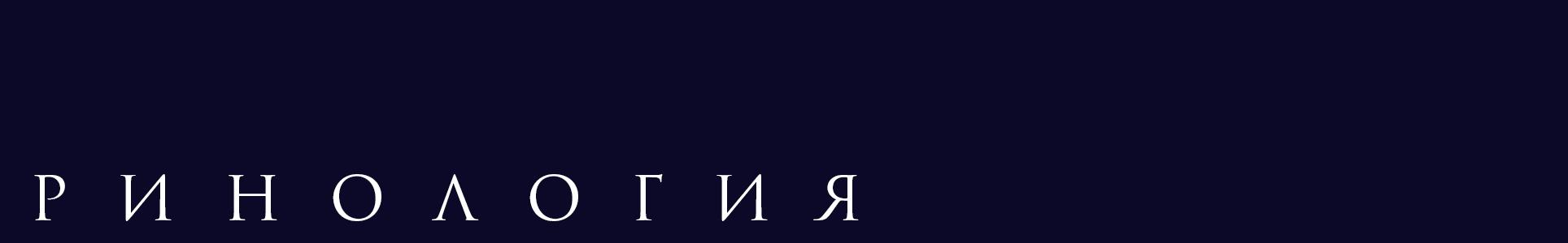 divider_rhinology